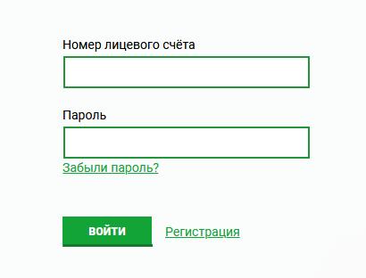 ТНС Энерго Великий Новгород: вход в личный кабинет