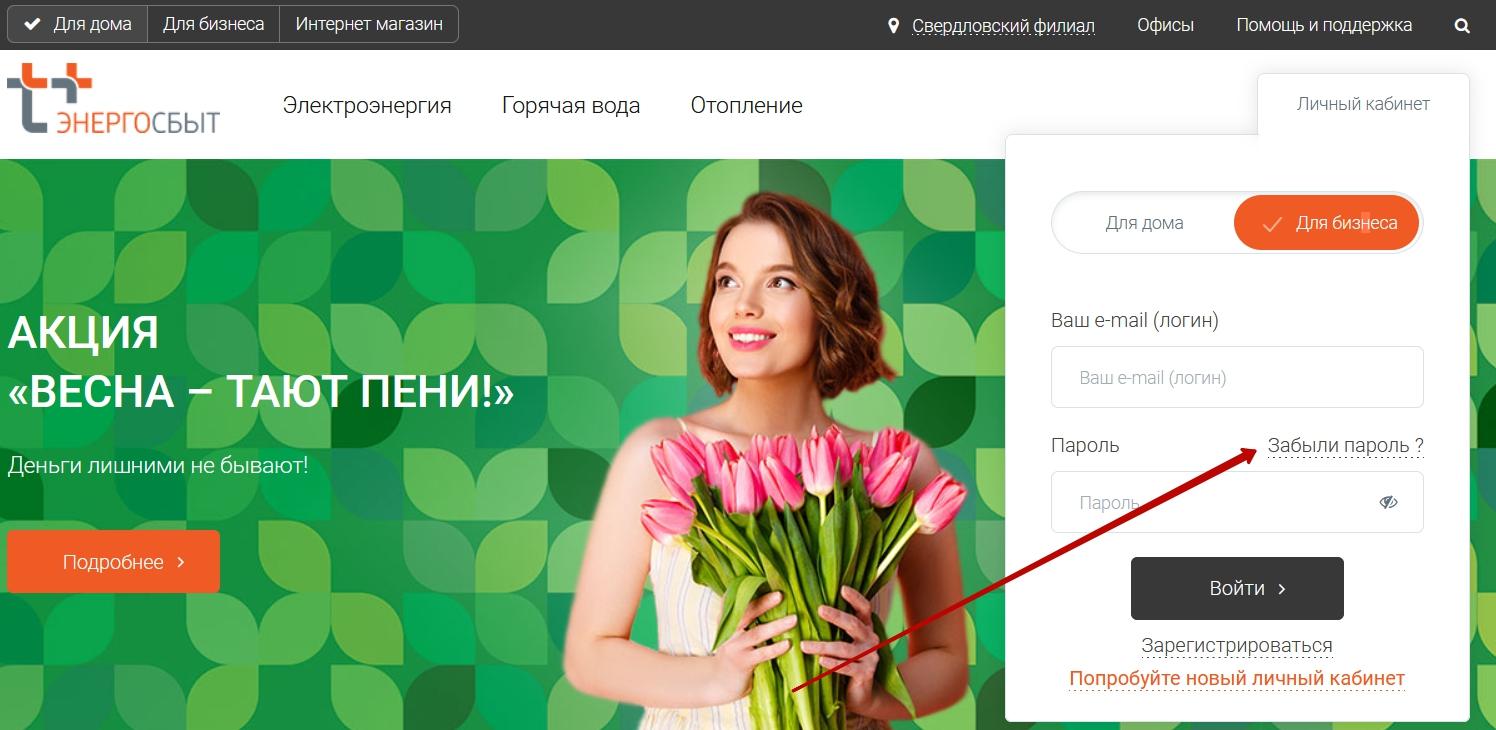 Восстановление пароля от личного кабинета Энергосбыт Ижевск